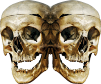 two skulls overlapping